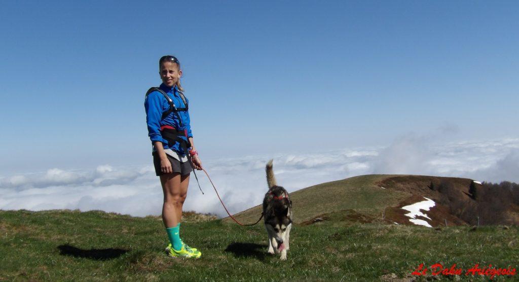 Cani trail Pyrénées - chiens Nordique