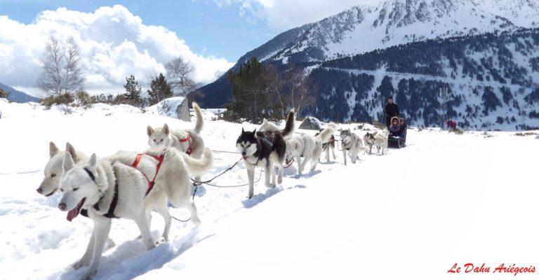 Baptême chiens de traineau Pyrénées