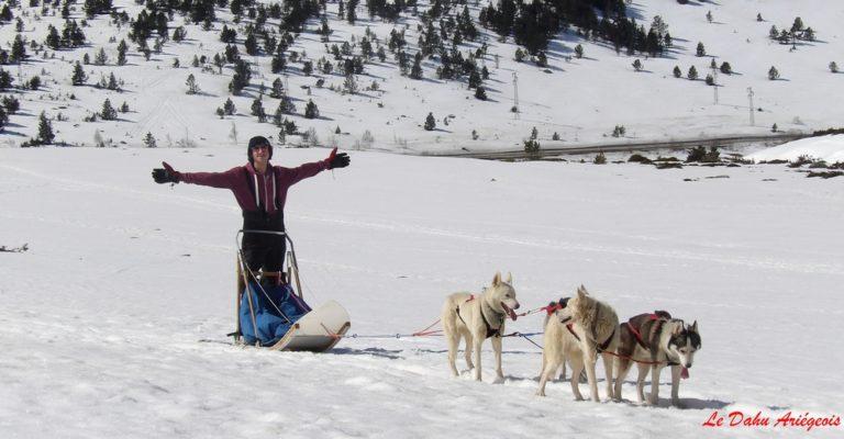 Initiation chiens de traineau Ariege