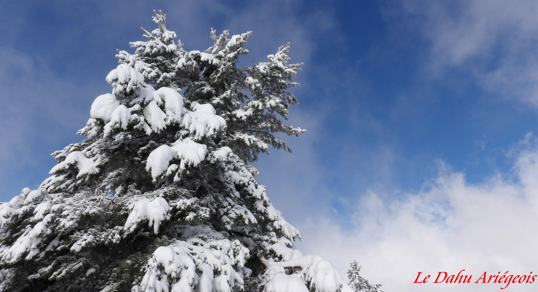 Paysage Ariége neige