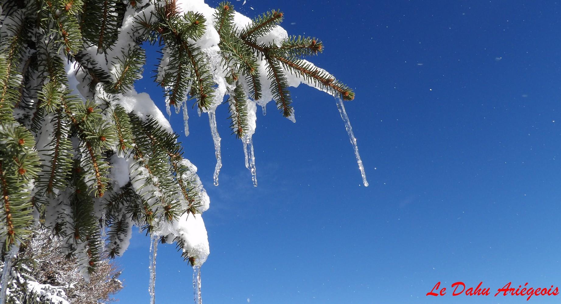 Raquettes a neige - Paysage Ariege 7