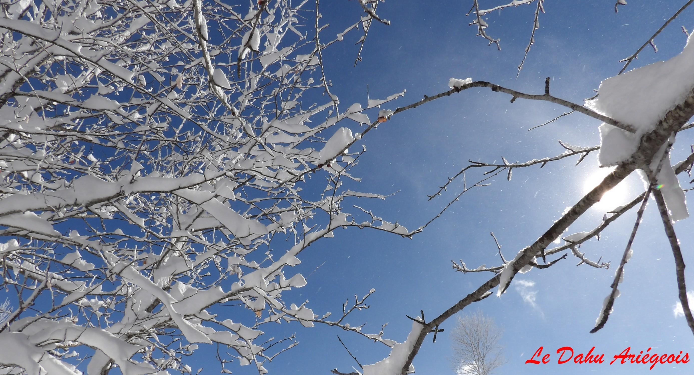 Raquettes a neige - Ariege 2