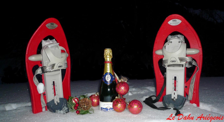 Nouvel an Nordique -Raquettes à neige