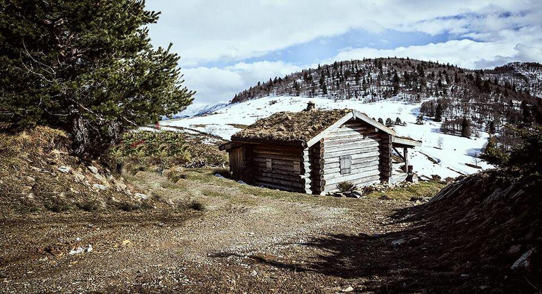 Cabane trappeur (5)