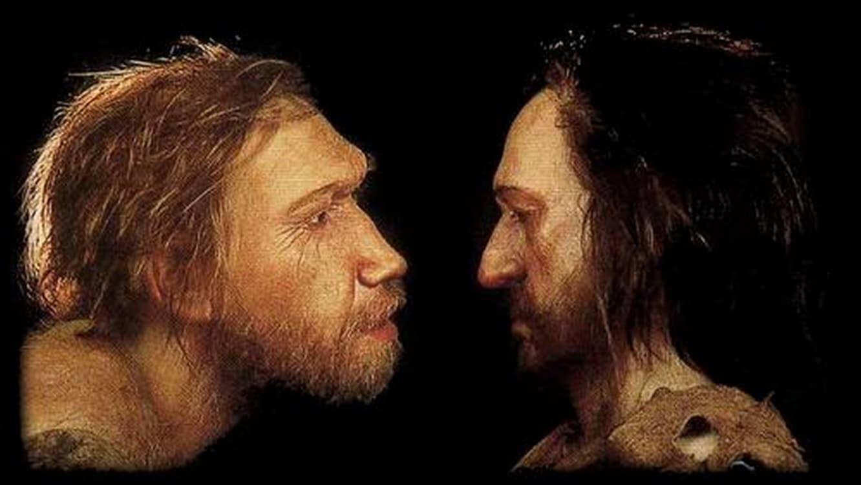 Comment était Neandertal